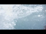 Психованная акула / Чудовище Акула (2009)